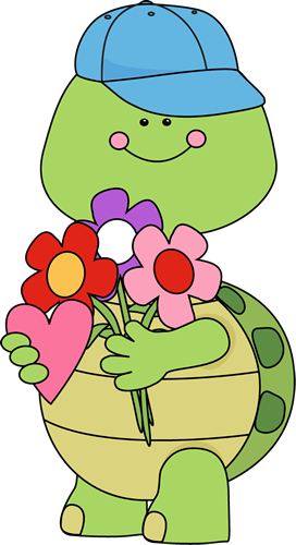 Valentine's Day Boy Turtle